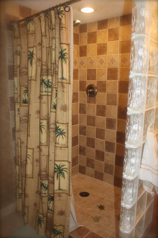 Custom extra roomy tile shower