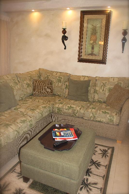 Large sofa with deluxe queen sleeper, new recessed lighting.