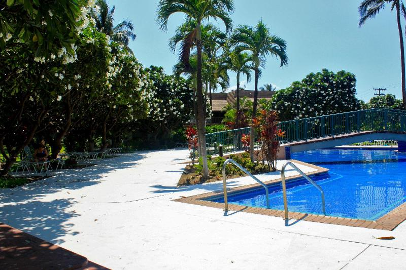 Check out the Tropical Shade area at the pool on the left