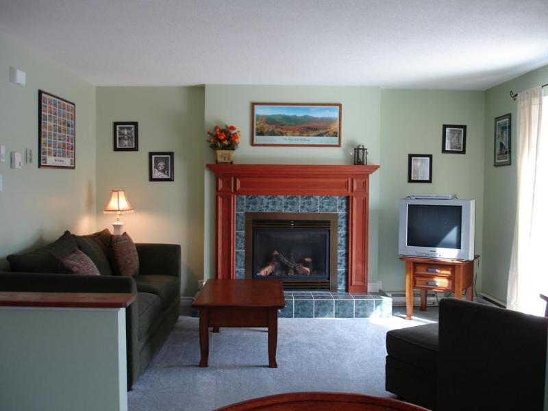 Living Room #8