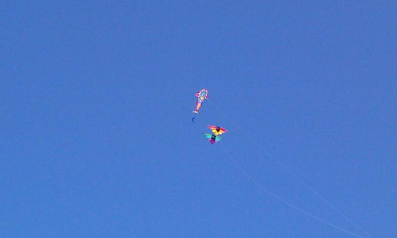 Great day for kite flying not a cloud in the sky!