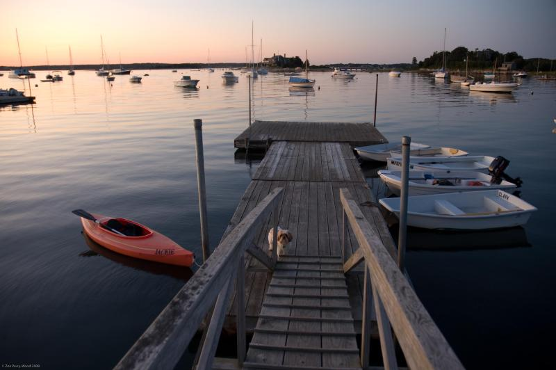 View of the Dock and Harbor at Sunset