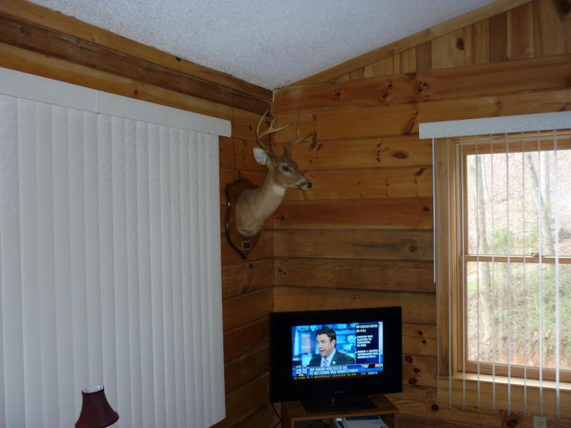 Un'altra vista della sala soggiorno con TV