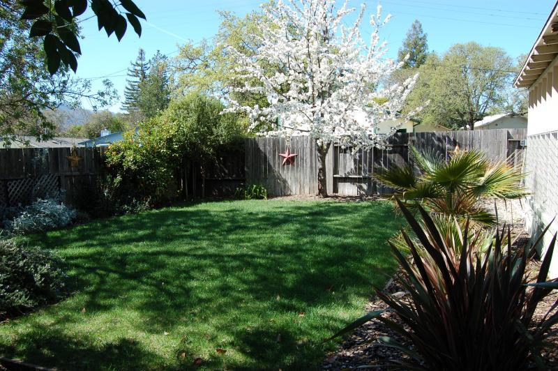 Back yard au printemps