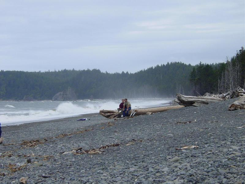 Rialto Beach - Just 25 min. from Cozy 2!!!