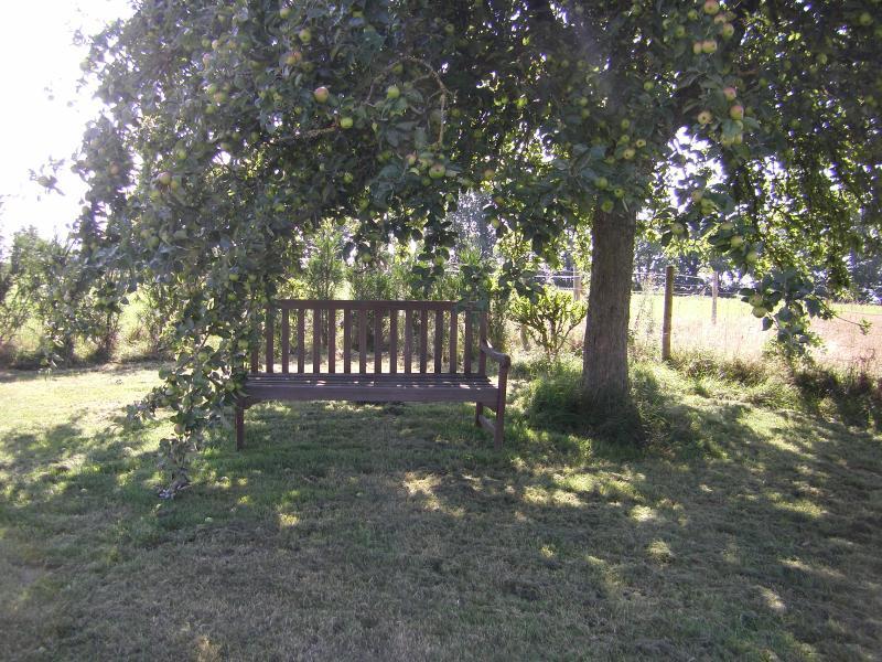 Un posto per sedersi e guardare il panorama