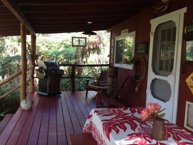 Lanai with gas grill
