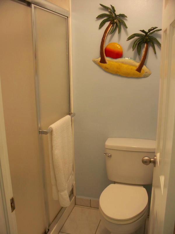 La région de voir la salle de bain principale