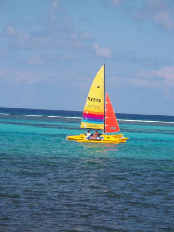 On voit souvent des voiliers et windsurfers dans notre baie sur une journée venteuse.