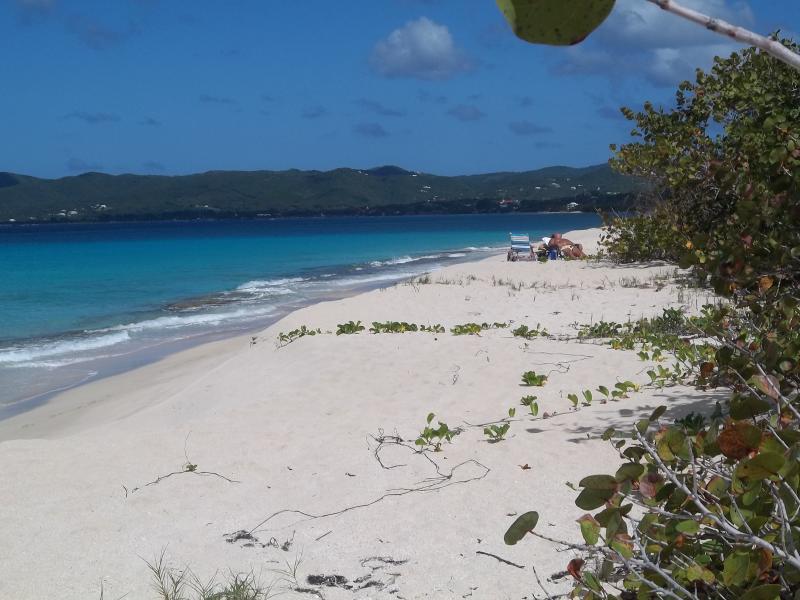 Il y a des plages magnifiques dans toutes les directions à Sainte-Croix.  Il s'agit d'Hey Penny plage - rive sud