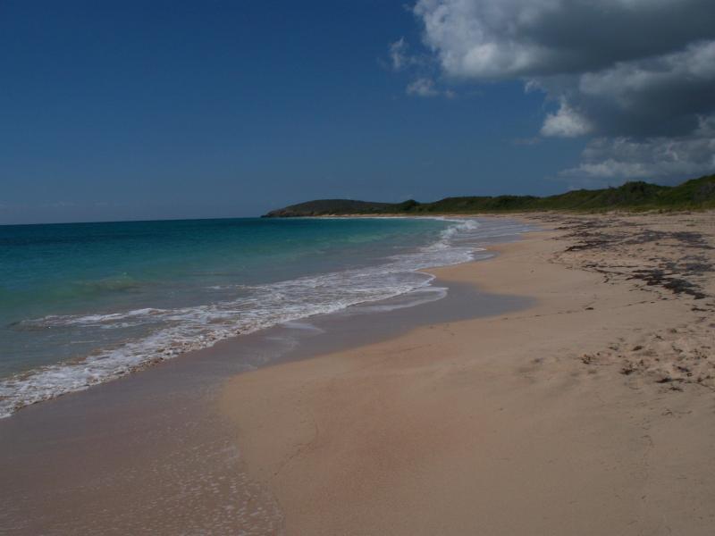 Sandy Point, sur la pointe sud-ouest de l'île est une réserve de tortues restreint
