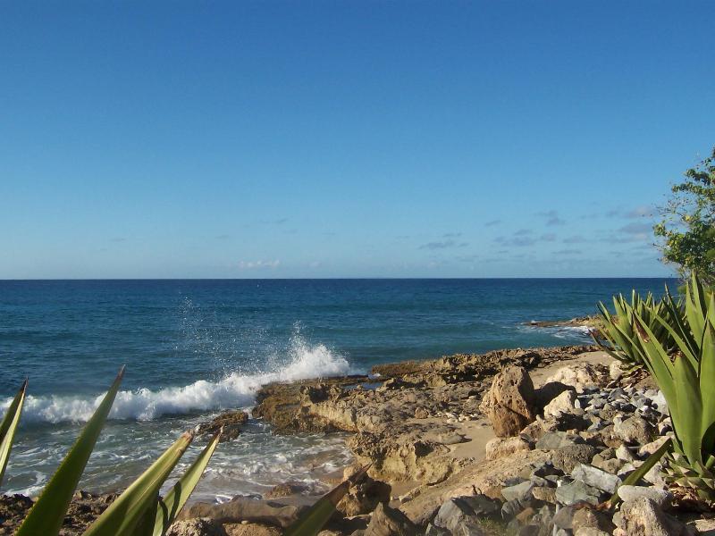 Une plage rive sud par Grapetree