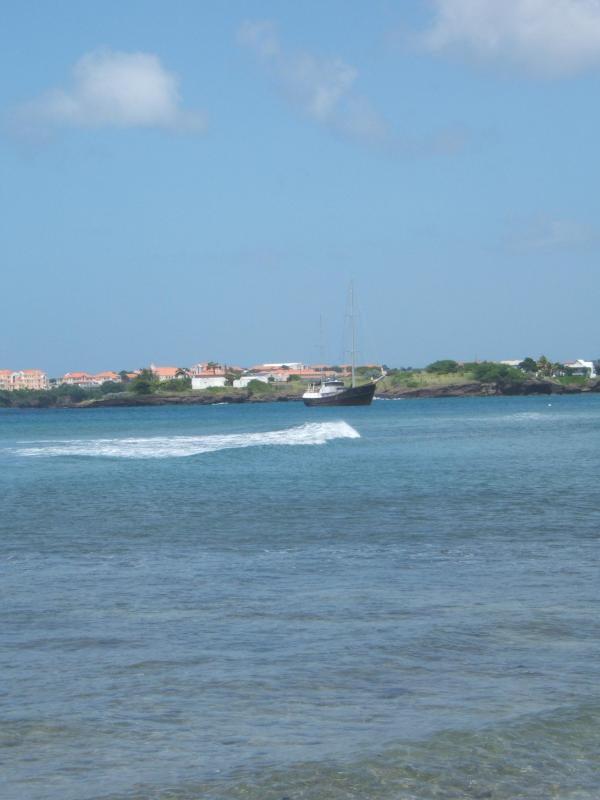 View of Prickly Bay & St. George's University
