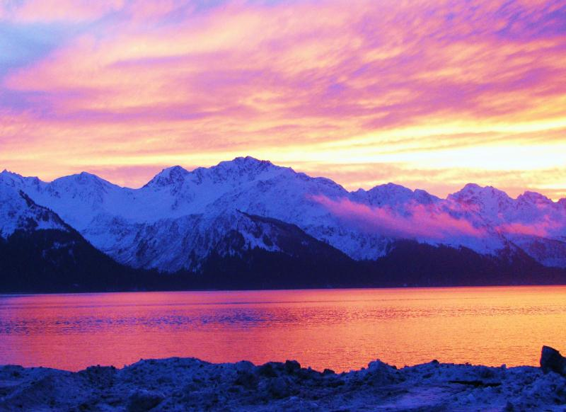 Arctic Paradise B&B, vacation rental in Seward