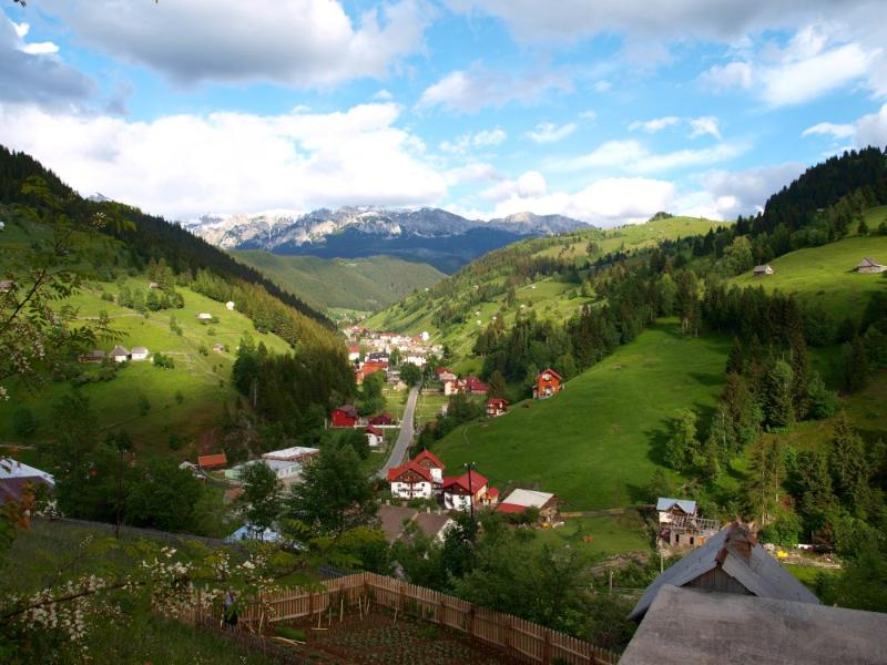 Bradul Chalet, vacation rental in Brasov