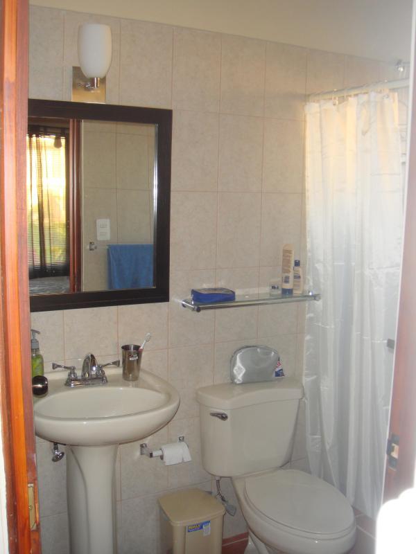 Washroom #1 (one of two)