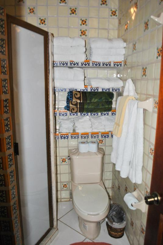 Guest bathrrom and shower