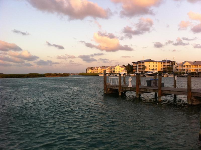 View from Marina
