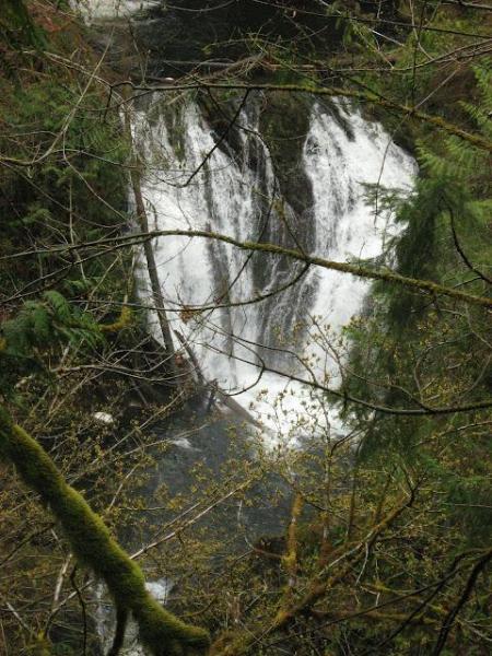 Bonnel Falls - una corta caminata.