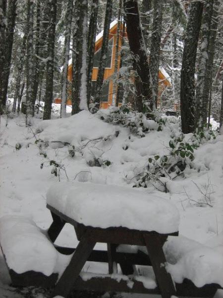 Vista desde la zona de picnic privado