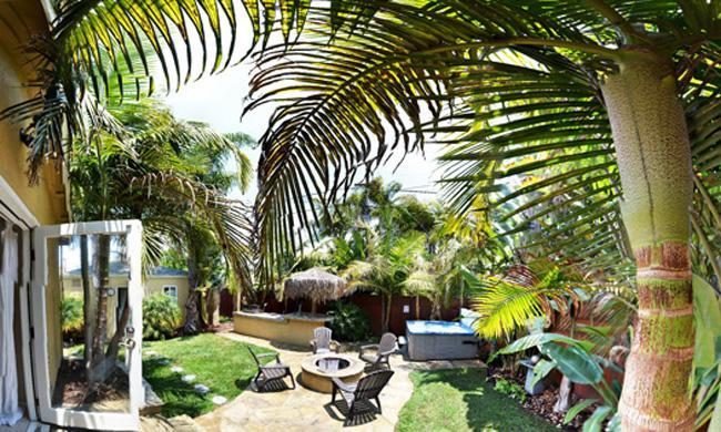 Backyard Panoramic