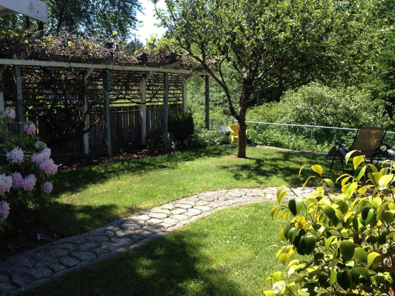 Back yard pathway.  Apple trees and grape vines