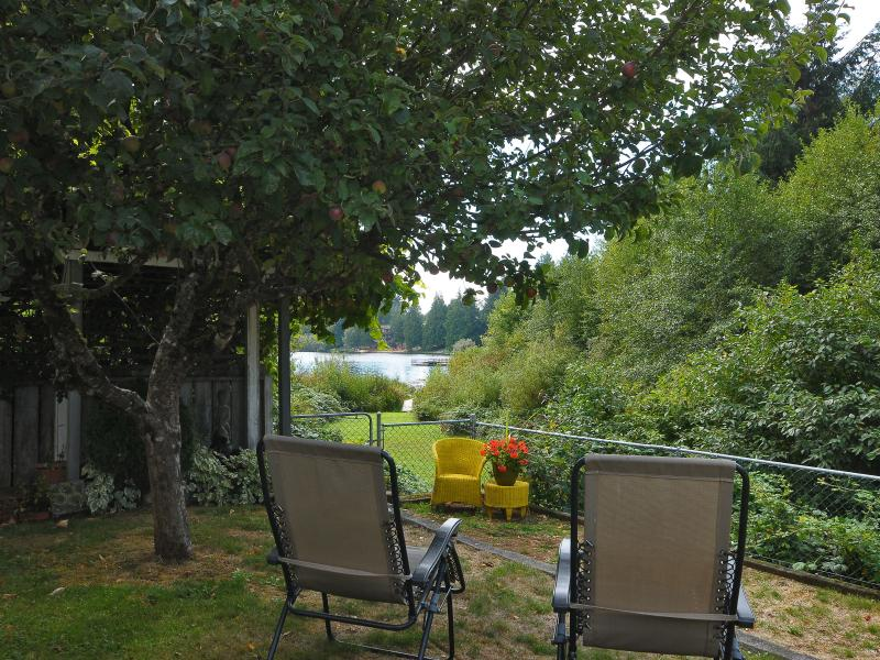 Sit under the shade of the apple tree and watch the deer frolic in the field...