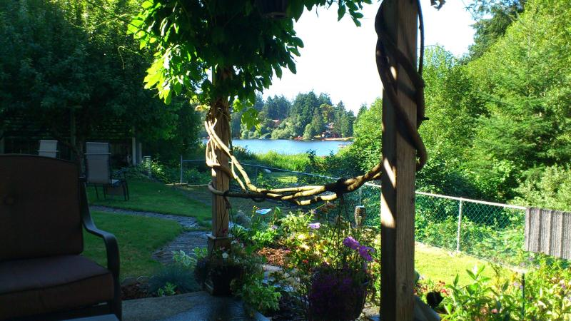 Summer Serenity, view from patio