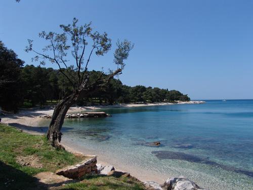 Bay Lone -One des plus belles plages de Rovinj