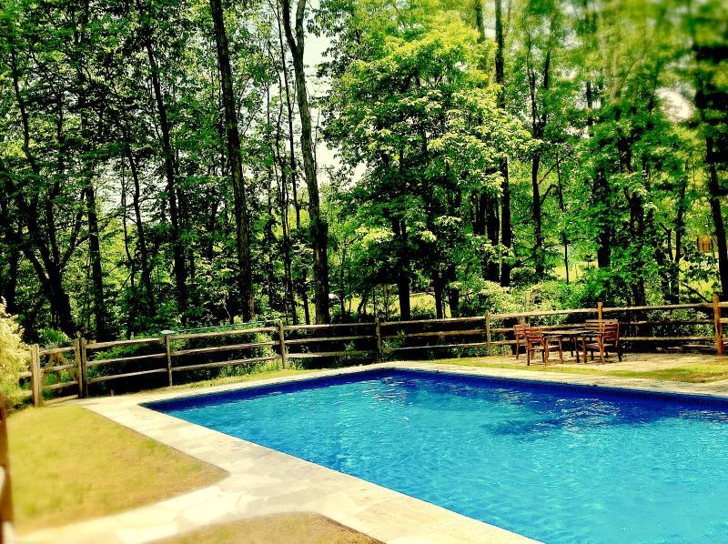 40 x 20 Heated Saltwater pool
