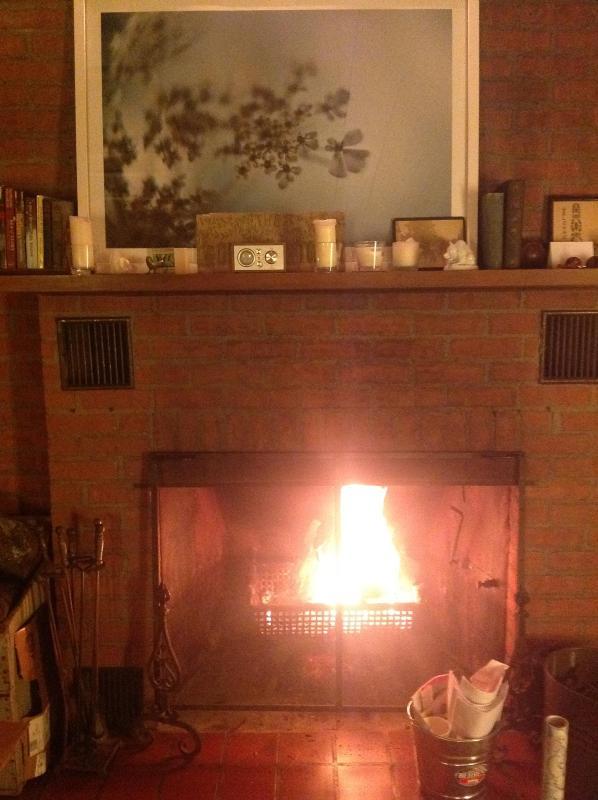 Fireplace ~ very toasty ~ wood provided