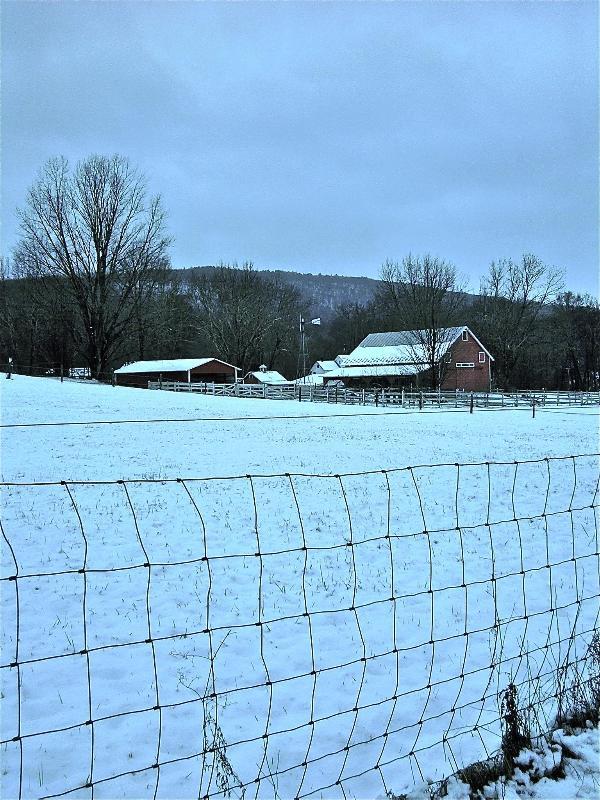 Farm next door in winter