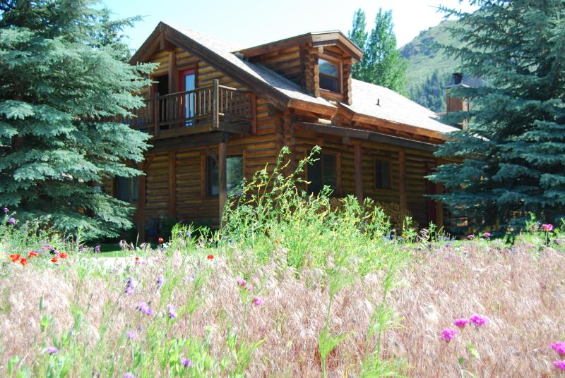 Log Home in Summer