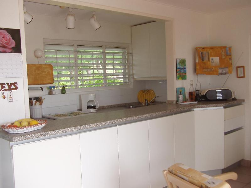 Galley Kitchen with pass through to Living Area