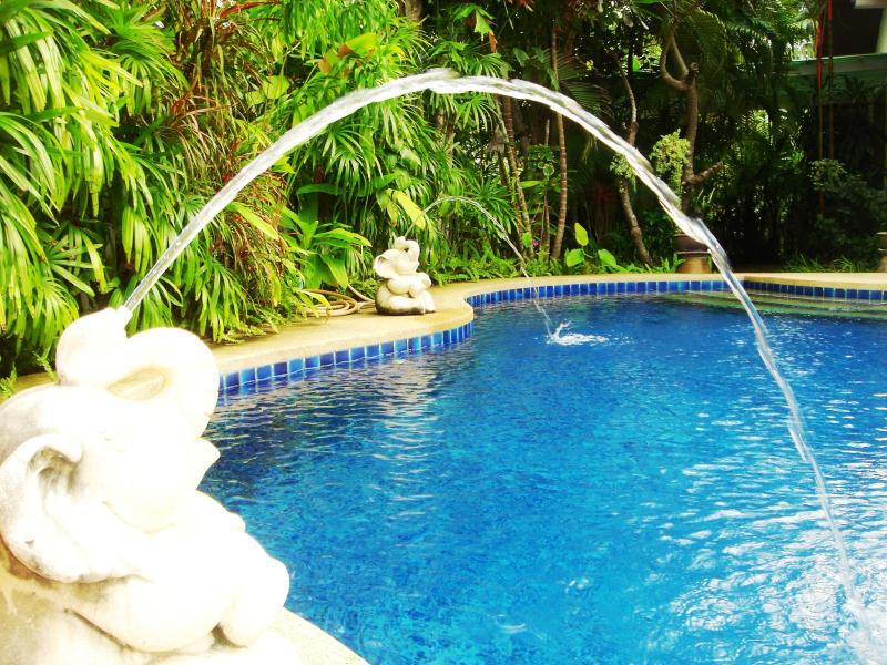 Very large swimming pool and 2 fountains