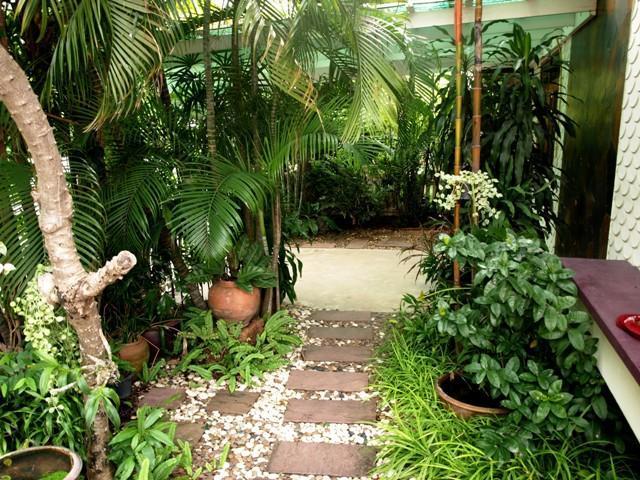 The tropical garden private path