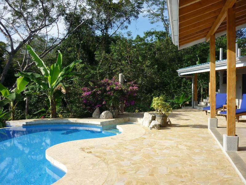 Large stone patio for outdoor living. Infinity salt water pool is entirely solar powered