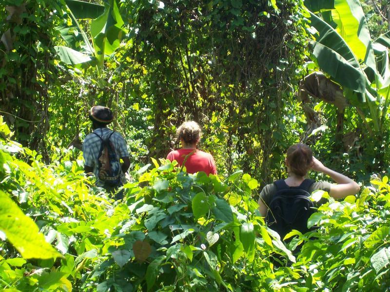 Exploring the Surroundings