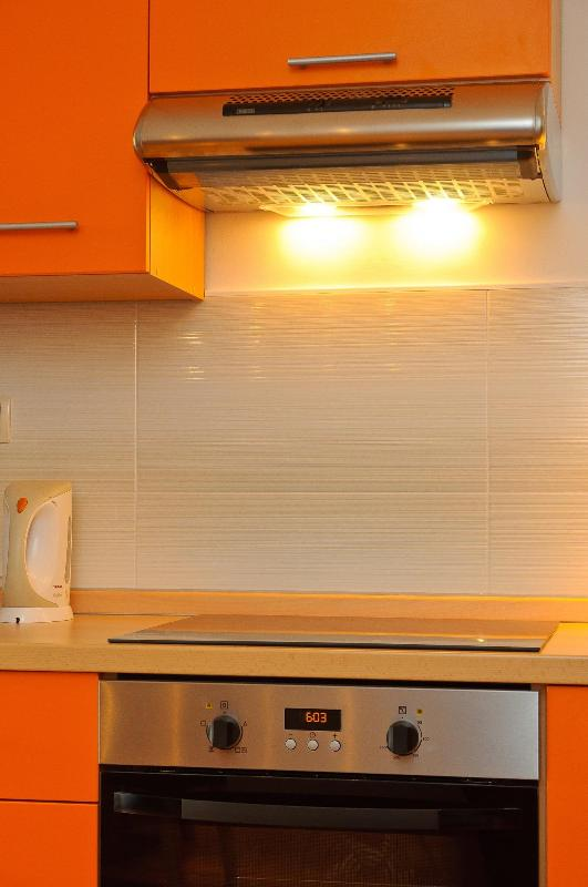 Electric oven and glass-ceramic stove