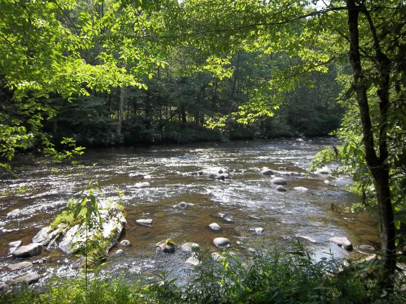 Fish, swim, relax, repeat!  'Evergreen on the River' at the Park and Cades Cove!, holiday rental in Townsend