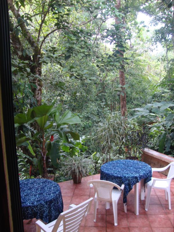 Patio with jungle views- great for wildlife.