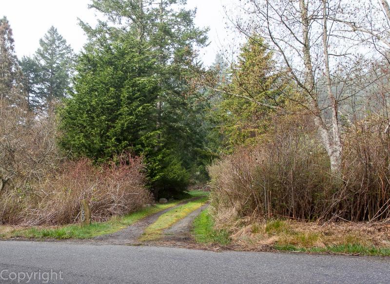Street View of driveway