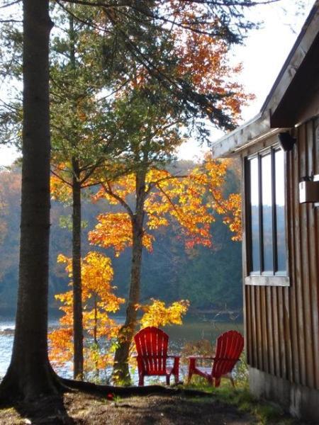 Sweet Fall Day