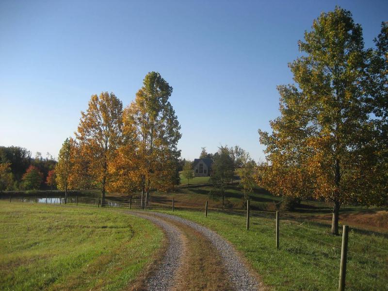 Camino de entrada a la cabina en el otoño
