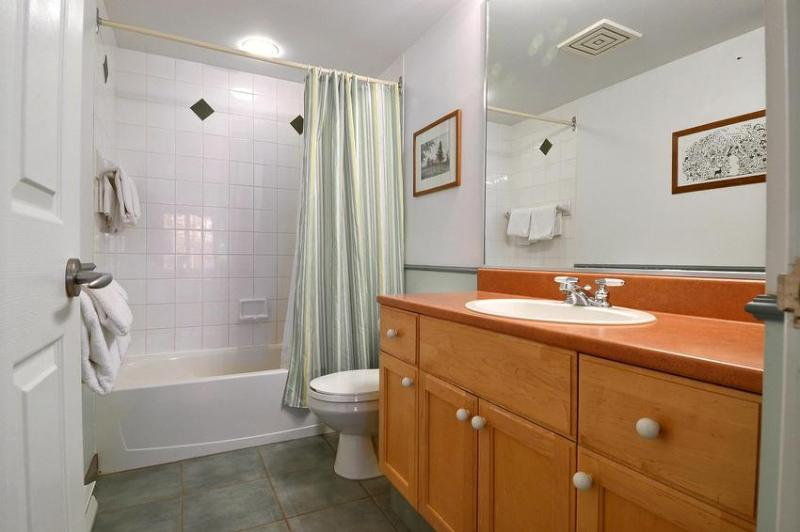 Master Bedroom Bathtub/Shower Combination