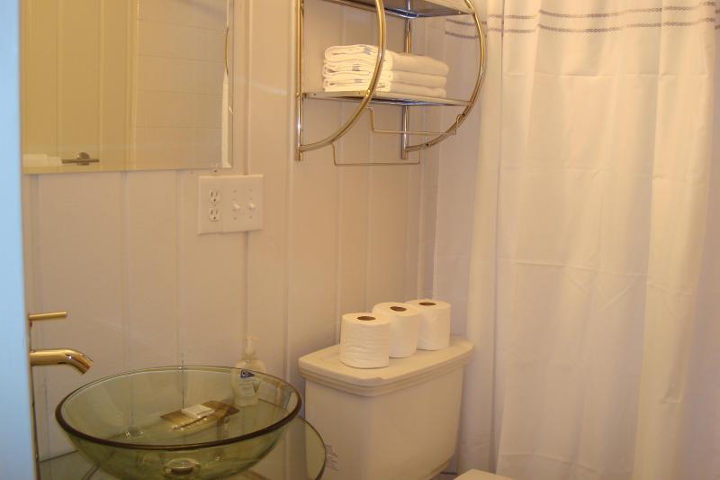 Baño de abajo ES POR la suite familiar