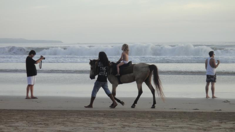 Horse riding on the beach, 500 meters from the villa.