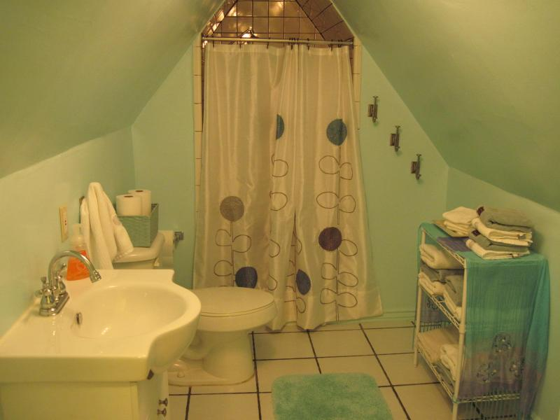 3rd floor full bathroom with shower