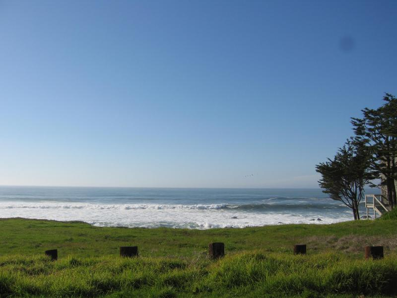 Cambria beaches are the best!!