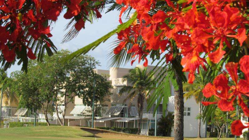 Great Deal! Deluxe Beach & Golf Villa, vacation rental in Dorado